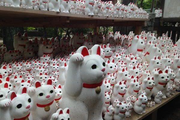 世田谷区の招き猫天国を知ってます?豪徳寺に行ってみた。