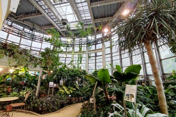 日本で一番小さな植物園 渋谷区ふれあい植物センターが素晴らしかった